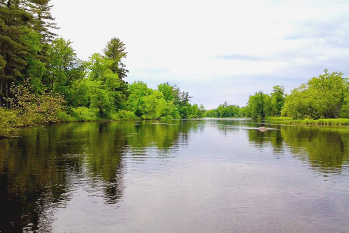 Fly fishing st croix river for St croix fishing